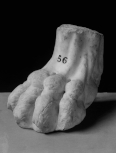 Roman furniture foot-base: the claw of a griffin(?)