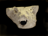 Head of a Roman drain or waterspout