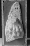 The paw of a sphinx-type foot/base from the support/ leg of a piece of Roman furniture