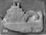 Fragment of a Roman carved antefix or a cresting plaque.  The main leaf and broad fillet core would have to be from an antefix of rather unusual enrichment or if it is a section of cresting relief then from one analogous in use to Soane S89 (Vermeule 129).